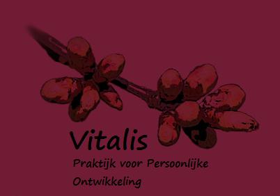 logo - Jolanda Klaassen - PRI therapie